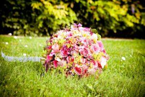 flowers-260891_960_720
